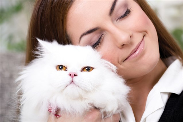 أمراض تنتقل من القطط إلى الإنسان