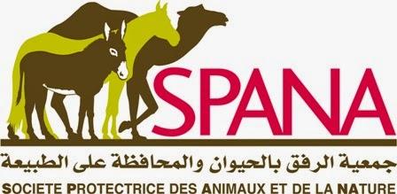 جمعية الرفق بالحيوان و المحافظة على الطبيعة ( spana maroc )